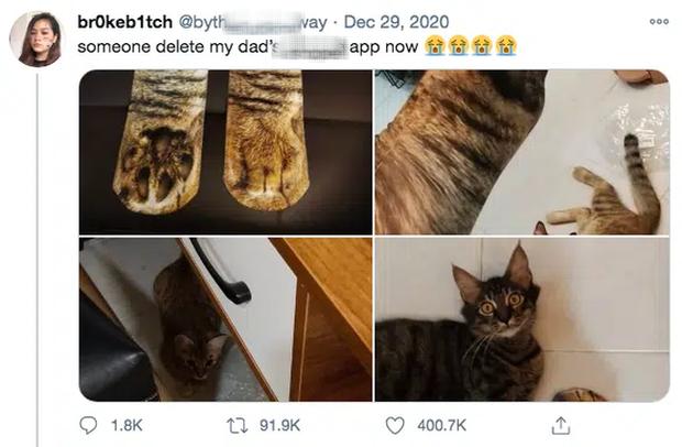 Biểu cảm ngỡ ngàng của chú mèo thu hút 400 nghìn lượt like, mọi thứ bắt nguồn từ đôi chân của chủ nhân và căn bệnh nghiện mua sắm online - Ảnh 2.