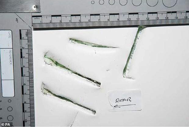 Vụ 39 người Việt trong container: Xót xa trước giây phút Tòa án bật lại đoạn ghi âm lời nói cuối cùng của các nạn nhân - Ảnh 2.