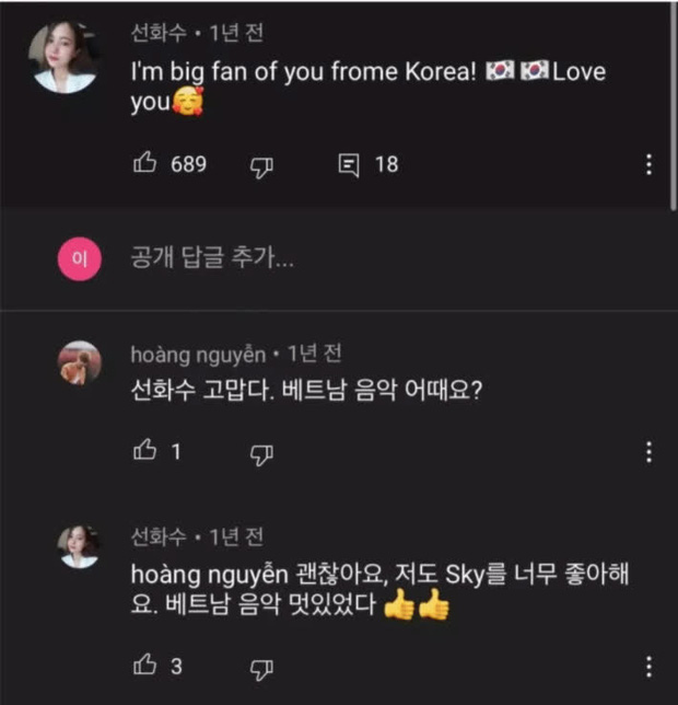 Knet tố cáo fan Việt giả làm người Hàn Quốc để bình luận hết sức giả trân dưới MV Hãy Trao Cho Anh của Sơn Tùng M-TP? - Ảnh 6.