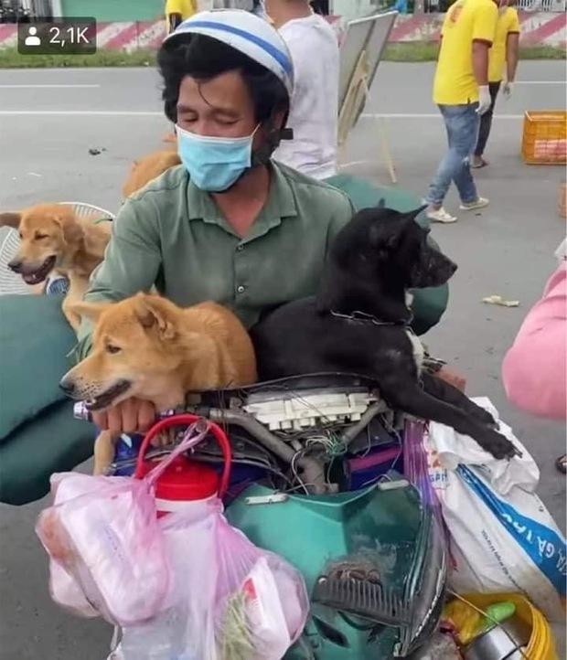 Đôi vợ chồng chở 15 con chó theo về quê bị tiêu hủy: Thương chúng như con, làm được 250k thì dành 100k mua thức ăn cho chúng - Ảnh 4.