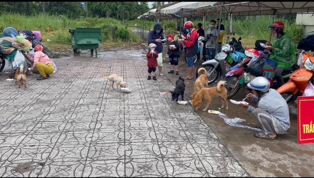 Xúc động hình ảnh thú cưng trên mọi nẻo đường hồi hương: Dù hành trình gian nan nhưng tất cả đều cùng nhau vượt qua - Ảnh 3.