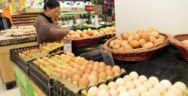 Cháu gái lỡ làm vỡ vỉ trứng trong siêu thị, nhân viên đề nghị bồi thường gấp 20 lần, cách xử lý của ông nội được khen ngợi vì quá khôn ngoan - Ảnh 2.
