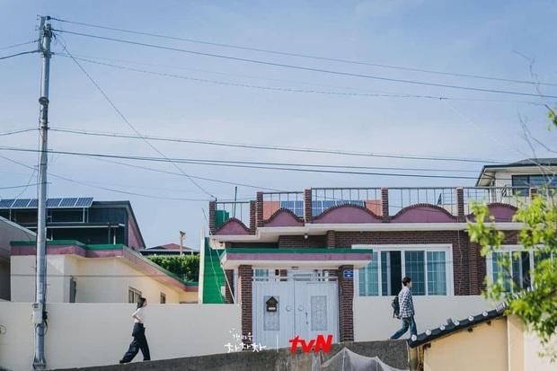 Hometown Cha-Cha-Cha: Ốc đảo yên bình xoa dịu tâm hồn khán giả! - Ảnh 13.