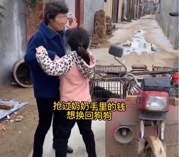 Video cô bé khóc lóc vật vã, ngăn không cho bà ngoại bán chó cưng nuôi 2 năm gây tranh cãi trên MXH - Ảnh 2.