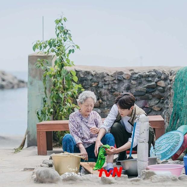 Hometown Cha-Cha-Cha: Ốc đảo yên bình xoa dịu tâm hồn khán giả! - Ảnh 8.