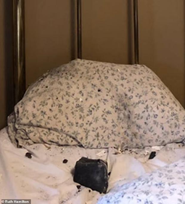 Đang ngủ giật mình tỉnh giấc vì bụi phủ kín mặt, người phụ nữ bật đèn mới biết mình thoát chết vì thứ quái dị không tưởng - Ảnh 1.