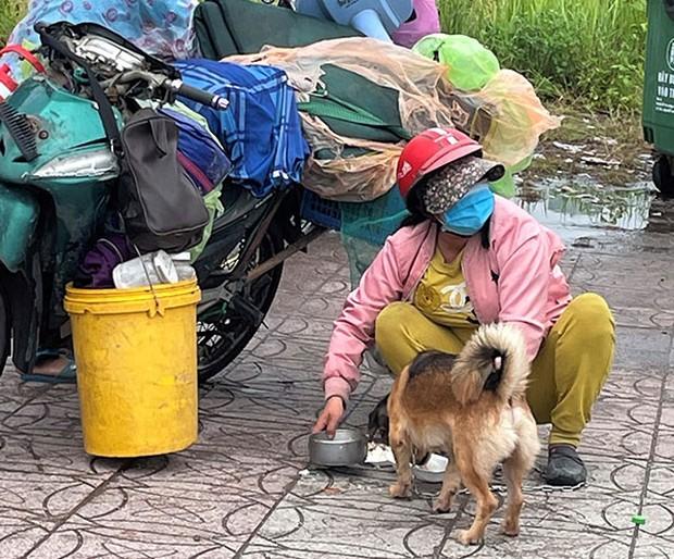 Nữ bác sĩ trong vụ 15 con chó bị tiêu hủy: Mang nhiều bệnh nền, chỉ vài tháng nữa là về hưu nhưng vẫn tham gia chống dịch - Ảnh 1.