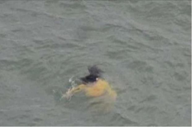 Lao xuống sông để cứu cô gái đang chết đuối, ông lão bỗng dưng quay đầu về bờ với thái độ ức chế khó tả - Ảnh 1.