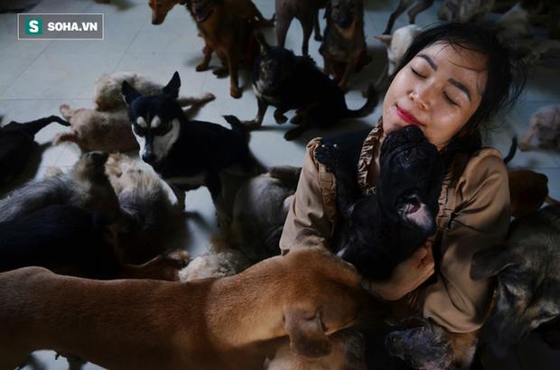 Cặp vợ chồng cưu mang 100 con chó, mèo bị chủ F0 bỏ rơi mùa dịch: Chúng tôi không sinh con để chu toàn cho tụi nhỏ - Ảnh 3.