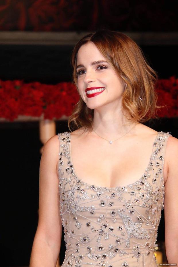 Năm 2017 Emma Watson có 1 thảm đỏ huyền thoại ở Trung Quốc: Đẹp nức nở tựa công chúa, đến mức ảnh chụp lướt mỗi năm đều gây bão MXH - Ảnh 7.