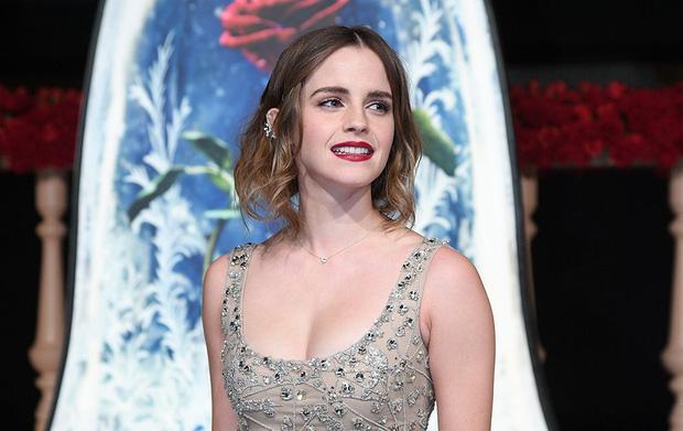 Năm 2017 Emma Watson có 1 thảm đỏ huyền thoại ở Trung Quốc: Đẹp nức nở tựa công chúa, đến mức ảnh chụp lướt mỗi năm đều gây bão MXH - Ảnh 6.