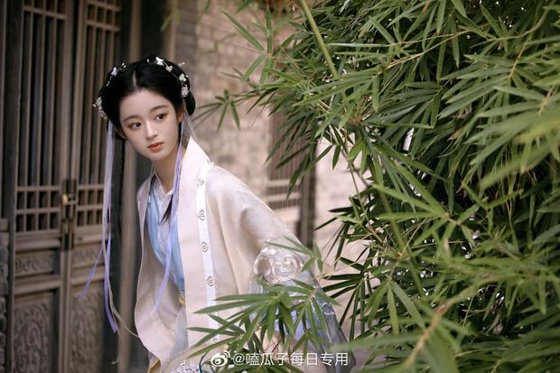 Weibo sốt xình xịch với visual tiểu mỹ nhân đóng cùng Triệu Lệ Dĩnh, mới 14 tuổi nhưng nhan sắc đã đẹp tựa tiên tử - Ảnh 5.