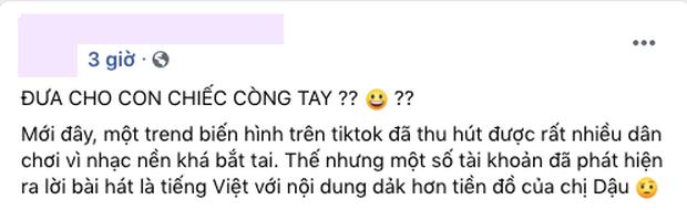 TikTok Việt Nam lên tiếng về trào lưu gắn với ca khúc cổ suý chuyện loạn luân của rapper Chị Cả, hashtag liên quan cũng bị gỡ bỏ! - Ảnh 6.