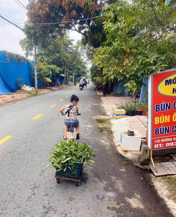 Không có điện thoại học online, cậu bé đẩy xe bán rau phụ mẹ: Đôi chân khiến tất cả đau lòng - Ảnh 1.