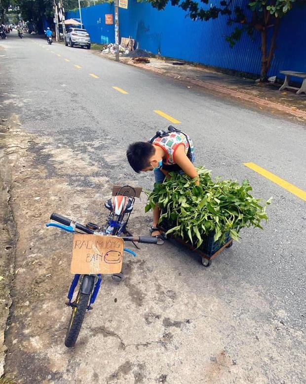 Không có điện thoại học online, cậu bé đẩy xe bán rau phụ mẹ: Đôi chân khiến tất cả đau lòng - Ảnh 2.