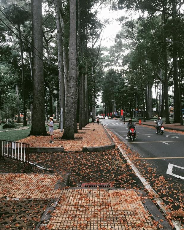 Công viên Tao Đàn (Sài Gòn) lọt top những địa điểm kinh dị nhất thế giới, nguyên nhân đến từ lời đồn thất thiệt năm xưa? - Ảnh 3.