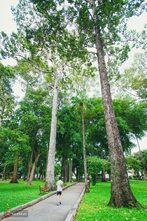 Công viên Tao Đàn (Sài Gòn) lọt top những địa điểm kinh dị nhất thế giới, nguyên nhân đến từ lời đồn thất thiệt năm xưa? - Ảnh 2.
