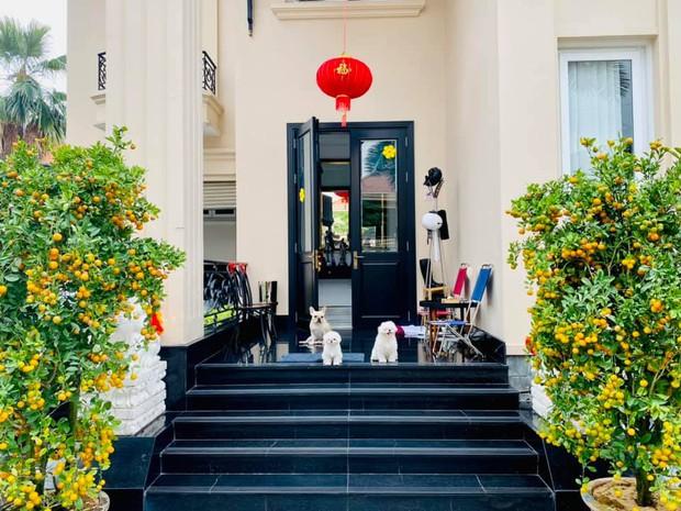 Phillip Nguyễn khoe một góc biệt thự đầy hoa vạn thọ ngày 30 Tết, view nhà giàu nên hoa cũng xinh hơn thì phải! - Ảnh 2.