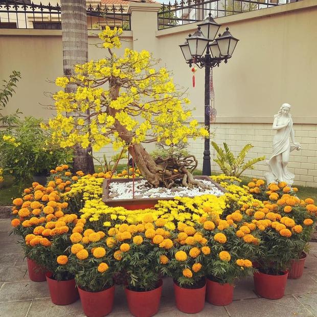 Phillip Nguyễn khoe một góc biệt thự đầy hoa vạn thọ ngày 30 Tết, view nhà giàu nên hoa cũng xinh hơn thì phải! - Ảnh 3.