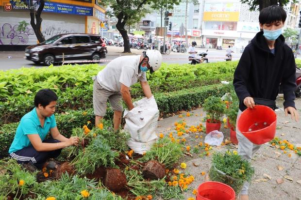 ẢNH: Sau khi tiểu thương ở Sài Gòn vứt bỏ hoa ế, nhiều người dân tranh thủ đến xin đất, lượm hoa mang về trưa 30 Tết - Ảnh 3.