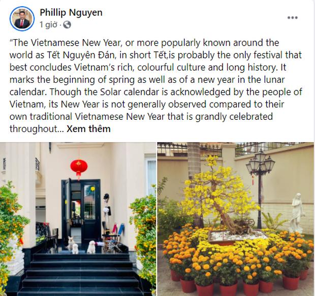 Phillip Nguyễn khoe một góc biệt thự đầy hoa vạn thọ ngày 30 Tết, view nhà giàu nên hoa cũng xinh hơn thì phải! - Ảnh 1.