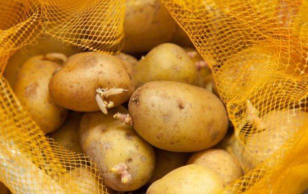 3 loại rau củ gây hại cho gan thường xuyên xuất hiện trên bàn ăn của nhiều gia đình hàng ngày - Ảnh 4.