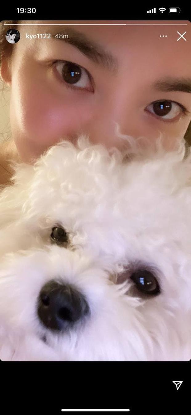 """Song Joong Ki và Song Hye Kyo đồng loạt có động thái ngày Valentine: Đàng trai vừa mở Instagram, đàng gái bỗng """"update"""" luôn? - Ảnh 2."""