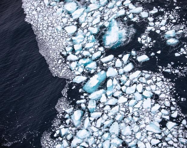 Thảm họa từ tảng băng trôi lớn nhất thế giới - Ảnh 3.