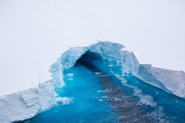 Thảm họa từ tảng băng trôi lớn nhất thế giới - Ảnh 4.
