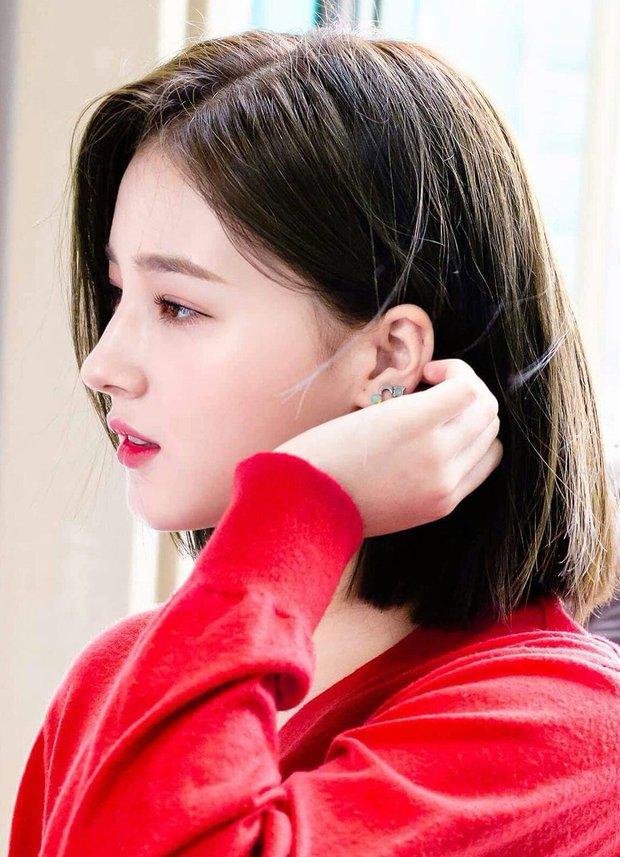 Top idol có sống mũi chơi cầu trượt đẹp nhất Kpop: V (BTS) được so với đồ họa, Sana và thành viên hụt BLACKPINK ai đỉnh hơn? - Ảnh 25.