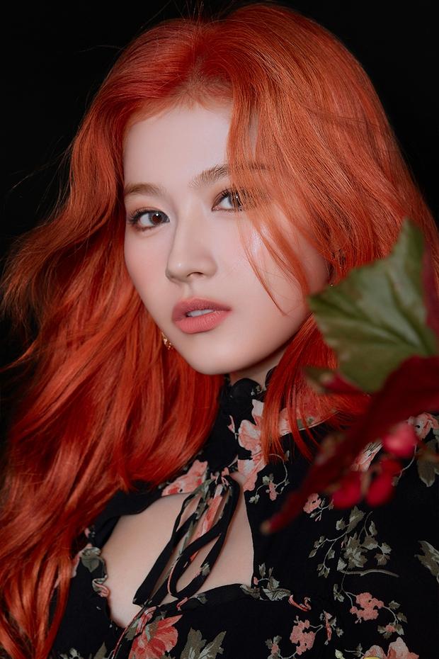 Top idol có sống mũi chơi cầu trượt đẹp nhất Kpop: V (BTS) được so với đồ họa, Sana và thành viên hụt BLACKPINK ai đỉnh hơn? - Ảnh 12.