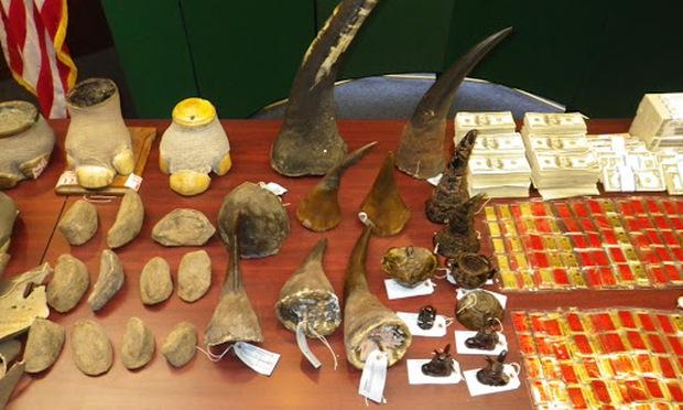 Bên trong chợ đen buôn lậu sừng tê kinh hoàng nhất châu Á: Không cách nào ngưng lại, kể cả khi đại dịch xuất hiện - Ảnh 5.