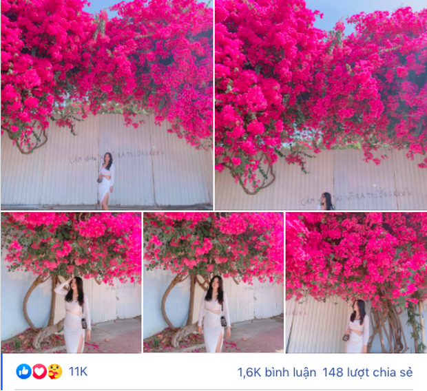 """Paper flower truss """"extreme"""" is causing a storm in Vung Tau because its blooming is so beautiful, people are racing to ask for addresses to check-in - Photo 1."""