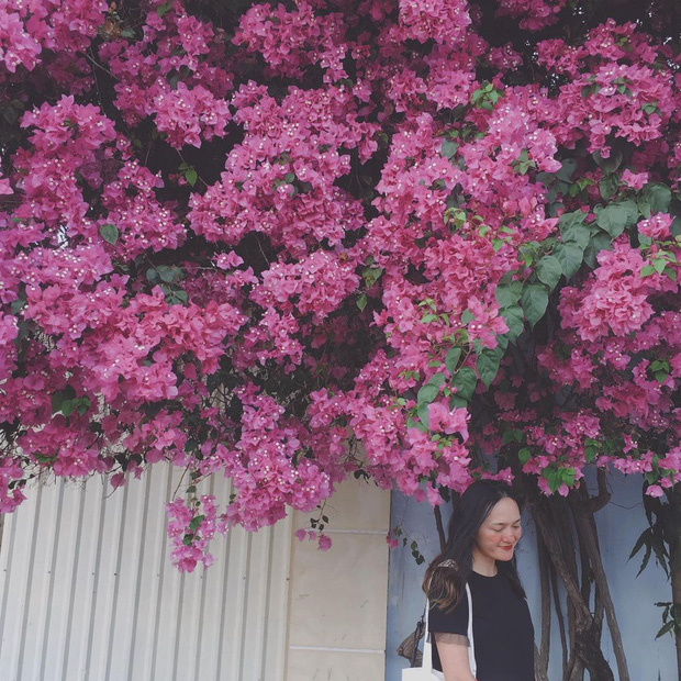 """Paper flower truss """"extreme"""" is causing a storm in Vung Tau because its blooming is so beautiful, people race to ask for addresses to check-in - Photo 14."""
