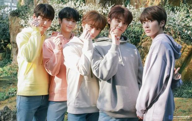 Big Hit debut gà nhà như súng máy, 4 năm cho ra mắt 8 nhóm nhạc làm Knet hoảng hồn: Đây là nhà máy sản xuất idol à? - Ảnh 9.