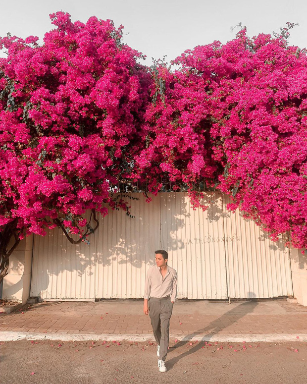 """Paper flower truss """"extreme"""" is causing a storm in Vung Tau because it blooms so beautifully, people race to ask for addresses to check-in - Photo 5."""
