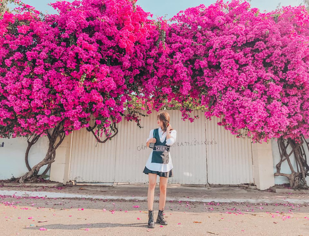 """Paper flower truss """"extreme"""" is causing a storm in Vung Tau because its blooming is so beautiful, people are racing to ask for addresses to check-in - Photo 4."""