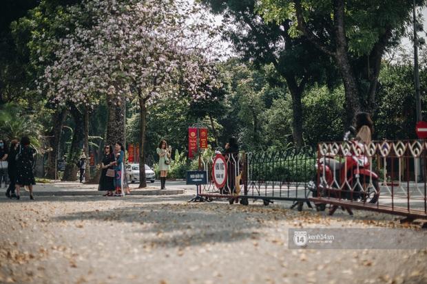 Hà Nội đẹp mê mẩn trong sắc tím hoa ban rợp trời, dân tình rần rần rủ nhau về con đường nổi tiếng chụp ảnh - Ảnh 6.