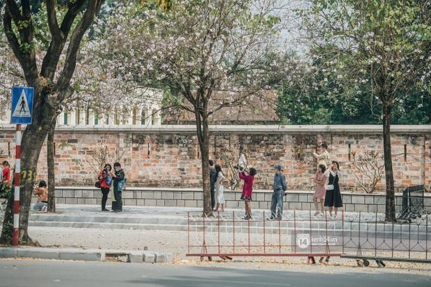 Hà Nội đẹp mê mẩn trong sắc tím hoa ban rợp trời, dân tình rần rần rủ nhau về con đường nổi tiếng chụp ảnh - Ảnh 3.