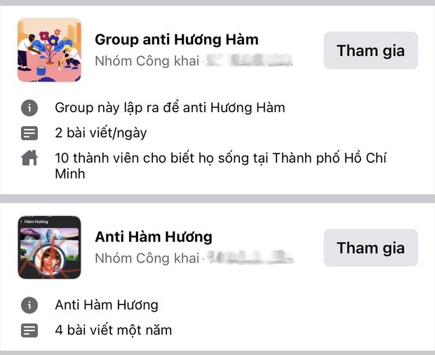 Xuất hiện hàng loạt group anti Hàm Hương - Thánh comment dạo nổi nhất mạng xã hội những ngày vừa qua - Ảnh 5.