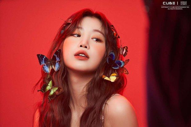 Soojin dính nghi án bắt nạt, nhiều store Peripera ở Hàn vội che mặt đại sứ khiến netizen Việt phẫn nộ - Ảnh 2.