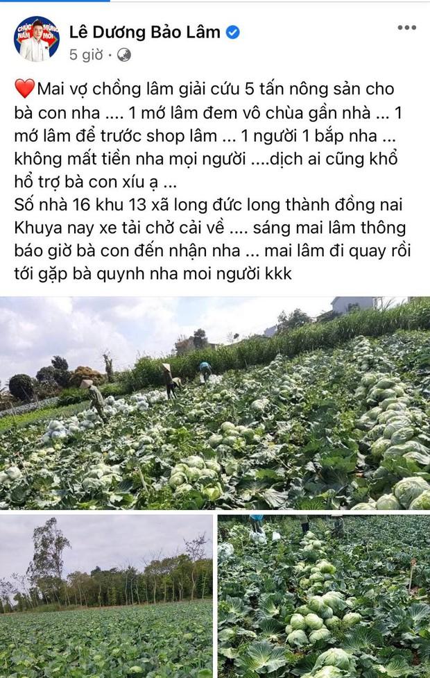 Lê Dương Bảo Lâm giải cứu 5 tấn nông sản cho bà con giữa dịch Covid-19: Hành động đẹp đúng thời điểm! - Ảnh 2.