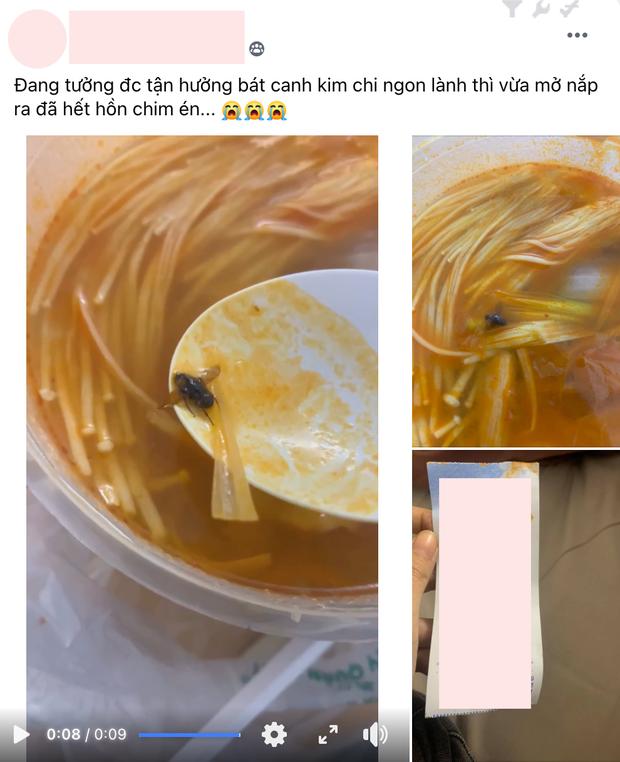 Cô gái vui mừng vì order bát súp kim chi được khuyến mãi con ruồi siêu béo, vừa nhìn no luôn khỏi cần ăn! - Ảnh 1.