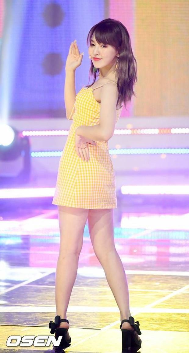 Không ngờ dàn nữ idol này hack dáng ảo diệu đến thế: Cao khiêm tốn nhưng body đỉnh cao, ngã ngửa khi so với idol cao kều - Ảnh 10.