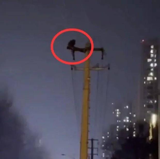 Hàng chục nghìn hộ dân bị mất điện vì một người đàn ông trèo lên cột điện để... gập bụng, hình ảnh được ghi lại khiến ai cũng ngán ngẩm - Ảnh 2.