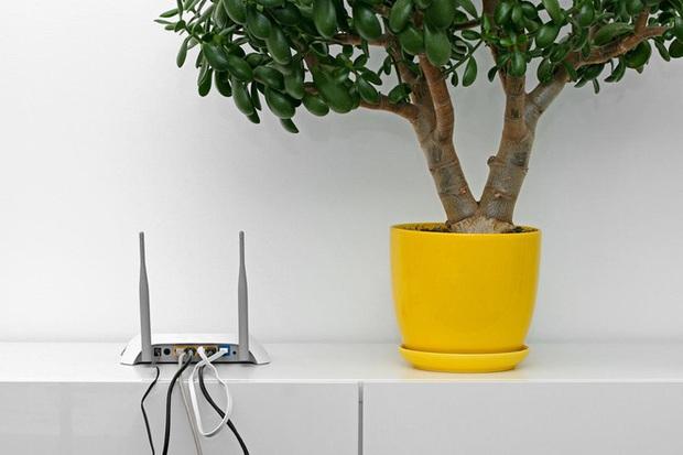 Đừng đặt router Wi-Fi ở 3 vị trí này trong nhà, nếu không tốc độ 100Mbps cũng hóa rùa bò - Ảnh 3.