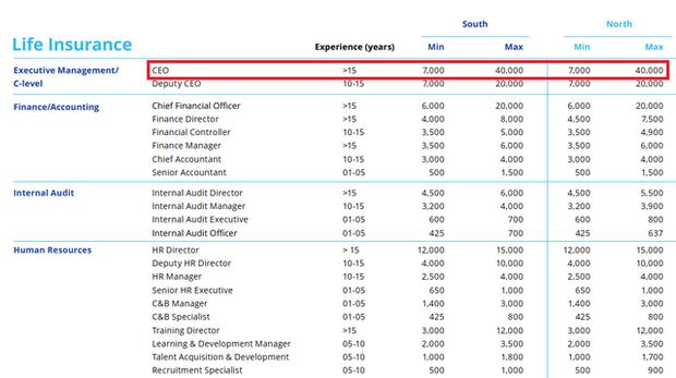 Hé lộ 3 ngành đang hot ở Việt Nam: CEO nhận lương tới 40.000 USD/tháng ~ 1 tỷ đồng, chưa gồm thưởng và các khoản khác - Ảnh 1.