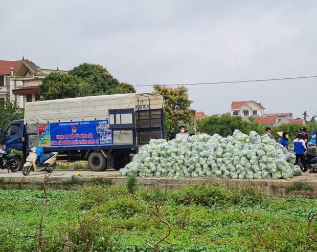 Vợ chồng Tuấn Hưng giải cứu 8 tấn nông sản cho bà con tỉnh Hải Dương gặp khó khăn giữa dịch Covid-19 - Ảnh 5.