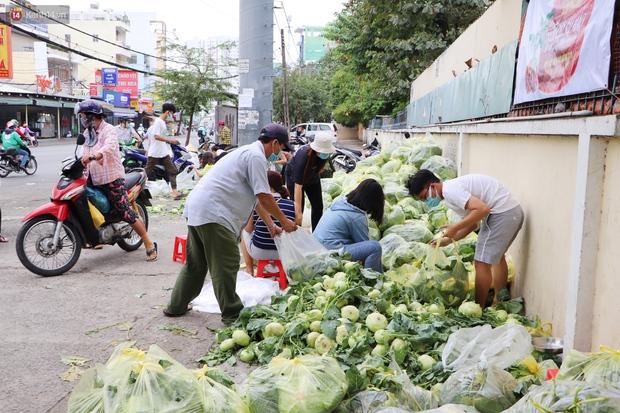 Rằm tháng Giêng, người Sài Gòn hồ hởi kéo nhau đi giải cứu bắp cải, su hào cho bà con Hải Dương - Ảnh 7.