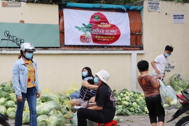 Rằm tháng Giêng, người Sài Gòn hồ hởi kéo nhau đi giải cứu bắp cải, su hào cho bà con Hải Dương - Ảnh 3.